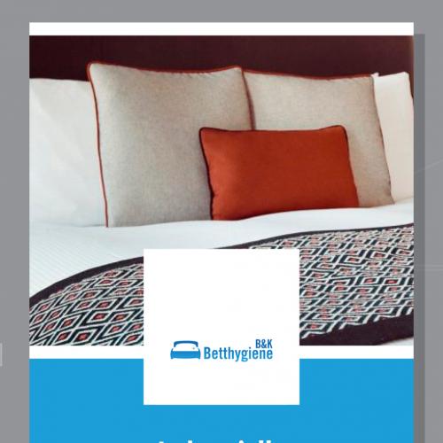 Flyer-Design für industrielle Matratzenreinigung