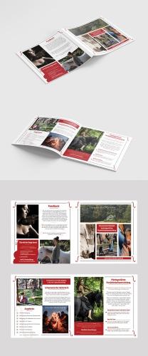 Flyer-Design für Schamanismus-Pferde-Musik