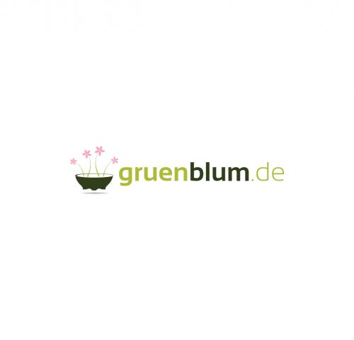Onlineshop für Grabschalen