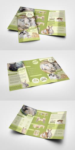 Onlineshop für Kleintierzubehör sucht Flyer-Design