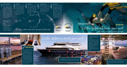 Flyer-Design für Safari Boot-Tours