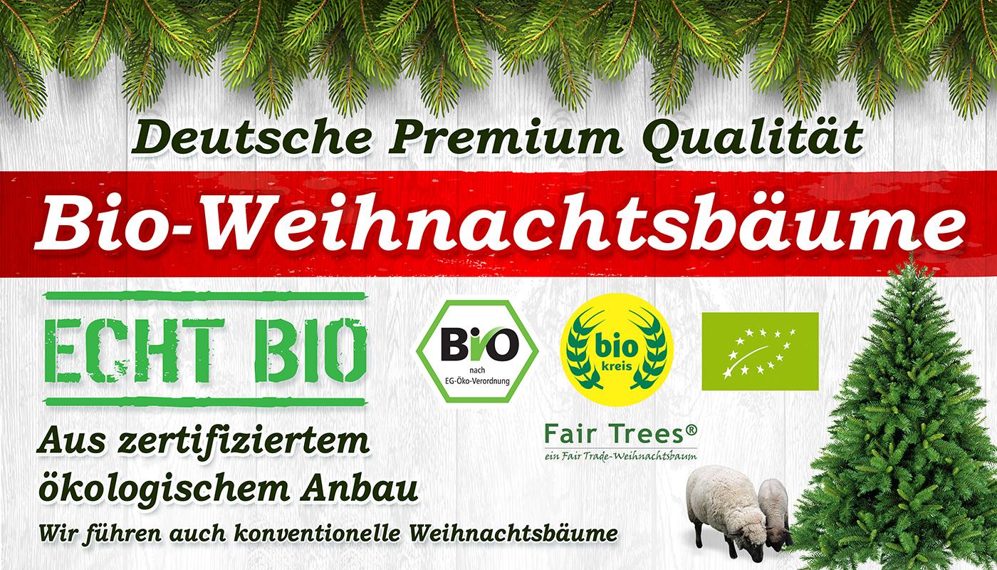 Bio weihnachtsbaum marburg