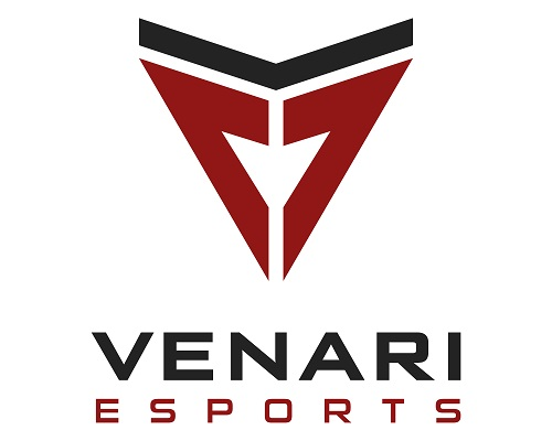 eSport 2D abstrakt Logo