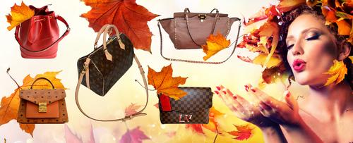 Online-Shop für Verkauf von Second Hand Designertaschen benötigt Webbanner-Design