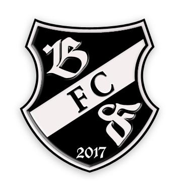 Logo-Design für Fußballverein