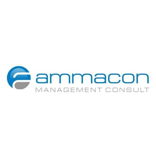 Logo-Design für Unternehmensberatung
