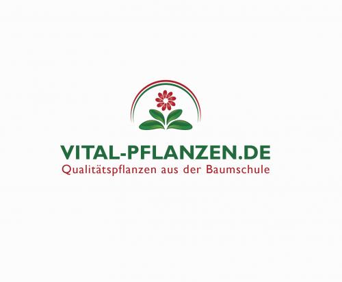 Logo-Design für Pflanzen Online Shop