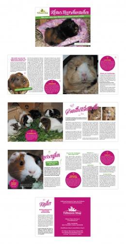 Flyer-Design für Infoblatt artgerechte Haltung Meerschweinchen