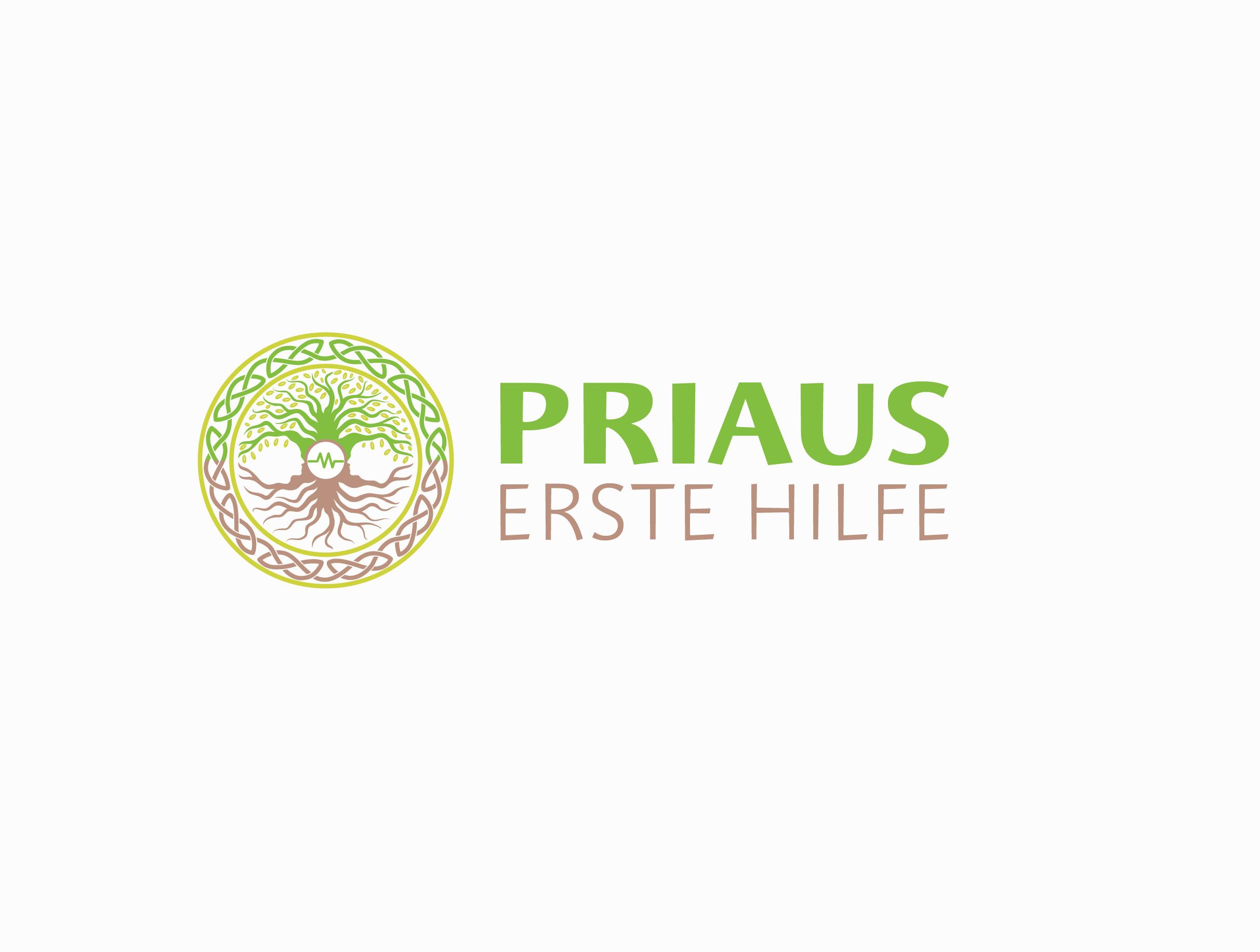 Logo design f r erste hilfe schule logo design for Designer schule