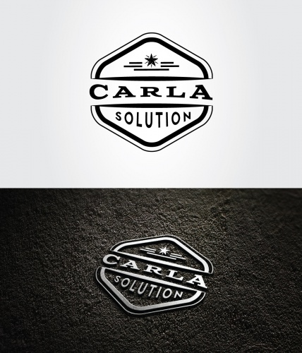 logo f r eine fahrzeugumbau firma logo design briefing. Black Bedroom Furniture Sets. Home Design Ideas